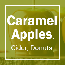 Caramel and Candy Apples