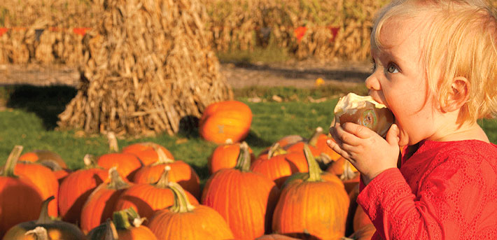 Fall Foods and Agritourism – the Perfect Pairing