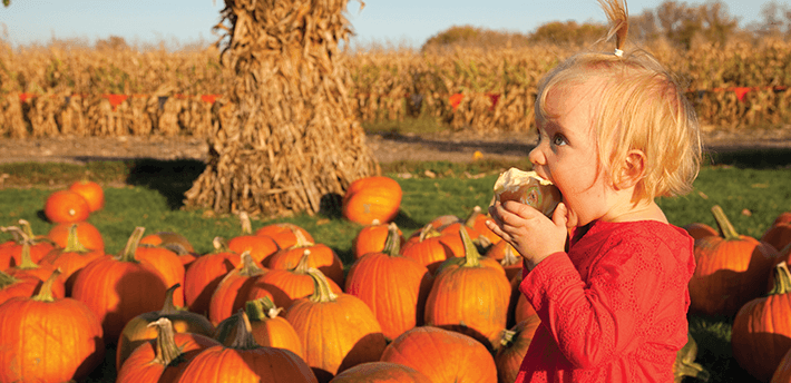 Fall Foods and Agritourism: The Perfect Pairing